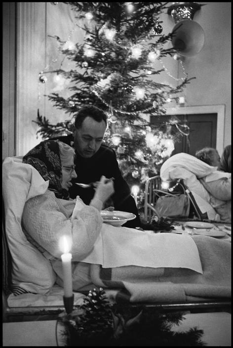 Karácsonyi bili