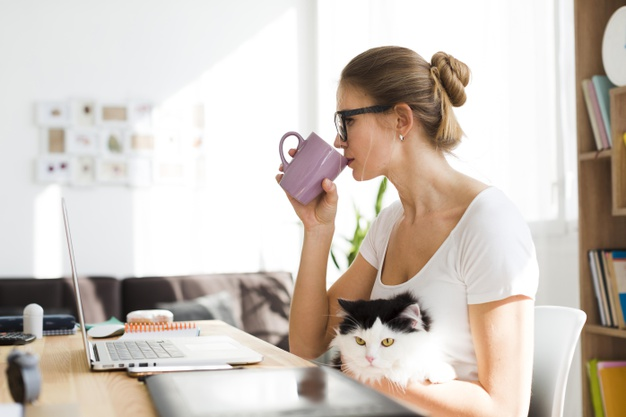 A home office és én – Egy gyümölcsöző kapcsolat története