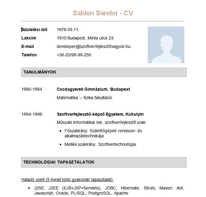 önéletrajz informatikus Sablon Sándor   a Beck and Partners önéletrajz mintája  önéletrajz informatikus